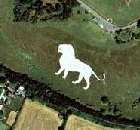 Whipsnade Lion Satellite Photograph